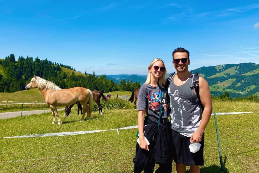 wandern Pferde